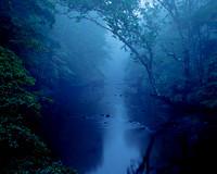 Misty River Scene